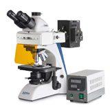 Ljusmikroskop